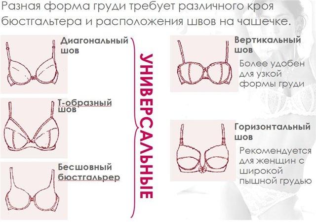 размеры и формы груди фото