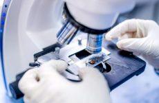 Что такое иммуногистохимическое исследование груди и как оно проводится
