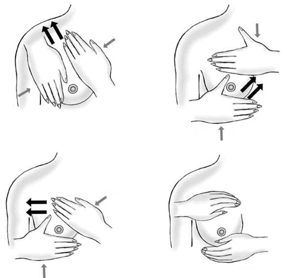 Массаж молочных желез