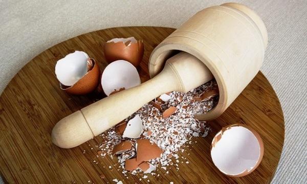 Толченая скорлупа яиц при гв