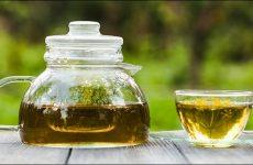 Чай с фенхелем при ГВ: польза, рецепты и готовые сборы