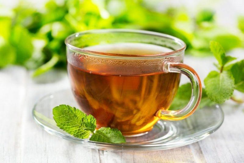 Мятный чай при гв