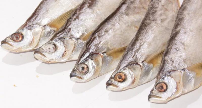Сушеная рыба при гв