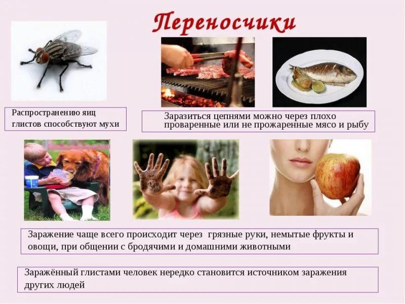 Лечение глистов при гв